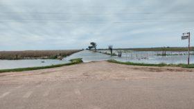 Por el cambio climático una zona que surgió con la soja ahora vive del trigo: igual este año no saben si podrán sembrarlo debido a las inundaciones