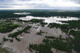 El pronóstico de una nueva tanda de lluvias en las zonas maiceras de EE.UU. afectadas por inundaciones provocó un alza sustancial de los precios del cereal