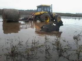 Alerta inundaciones: se proyecta un temporal intenso en el norte de la región pampeana