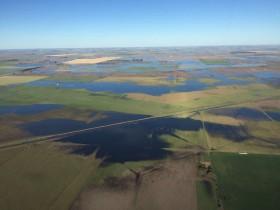 Buena noticia: luego de las lluvias de hoy se vienen varios días sin precipitaciones con buena insolación en las zonas inundadas