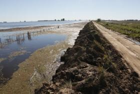 Se oficializó la emergencia agropecuaria para el oeste bonaerense por las inundaciones de octubre