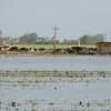 Alerta Santa Fe: se vienen cuatro días de tormentas intensas con lluvias torrenciales