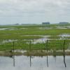 En 2016 apenas 15% de lo recaudado por el Fondo Hídrico se usó para controlar inundaciones en zonas productivas