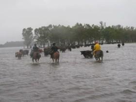 Planificación: cuando se vaya la inundación será indispensable rediseñar los sistemas productivos en función de las características de cada cuenca