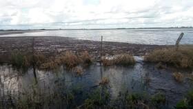 Alerta climática: el fin de semana se prevén lluvias torrenciales en zonas del norte pampeano afectadas por excesos hídricos