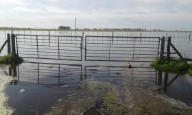 Se vienen cuatro días de lluvias intensas que podrían causar inundaciones en algunos sectores de la zona pampeana