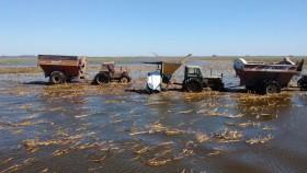Doce días después del temporal el gobierno bonaerense sigue sin actualizar el listado de partidos en emergencia agropecuaria