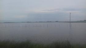 Autoridades bonaerenses piden a las rurales que hagan el trabajo que ellos no hicieron para evitar que productores inundados queden comprendidos en el impuestazo