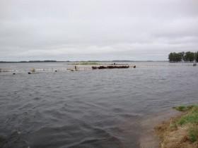 Esta semana vuelven las lluvias: alerta en las zonas bonaerenses afectadas por inundaciones