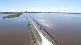 El gobierno nacional declaró la emergencia agropecuaria en las cuatro provincias afectadas por inundaciones