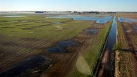 Vamos por partes: se declaró la emergencia agropecuaria para el oeste bonaerense pero por las inundaciones de abril