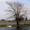 Hasta mediados de la semana que viene no se esperan lluvias importantes en las zonas inundadas