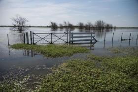 Insólito: obras destinadas a controlar inundaciones son financiadas por automovilistas mientras la soja se emplea para cubrir el 26% de la obra pública provincial