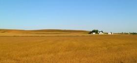 Nuevo récord histórico para el valor de la tierra en Iowa: alcanzó un promedio de 20.500 u$s/ha