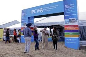 """La mayor parte de los recursos del Ipcva se utilizan para """"consolidar el mercado interno de carne vacuna"""""""