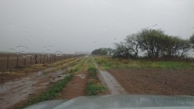 Esta semana se prevén precipitaciones acumuladas de hasta 90 milímetros en el NEA