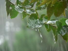 Volvieron las lluvias: el tiempo inestable seguirá hasta el martes