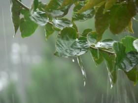 Esta semana la mayor parte de las precipitaciones se concentrarán en el norte del país