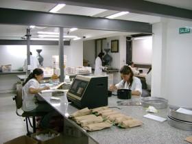 Investigadores santafesinos en busca del Santo Grial agrícola: sojas de alto rinde con elevado nivel proteico