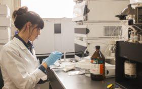 La avanzada tecnológica que viene en camino: crearon un marco regulatorio para liberar microorganismos modificados de uso agropecuario