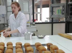 Buenos Aires: ya está disponible la posibilidad de realizar análisis gratuitos de calidad de trigo 2019/20