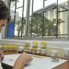 """Extendieron el sistema Bolsatech por una campaña más para evitar que los forwards de soja 2018/19 lleven la """"cláusula Monsanto"""""""
