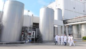 Grandes industrias lácteas volvieron a registrar márgenes favorables: pero las pymes siguen con números rojos