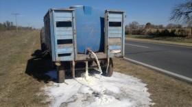 Estado Ausente: tamberos se ven obligados a tirar cientos de miles de litros de leche por una demostración de fuerza de sindicalistas de Atilra