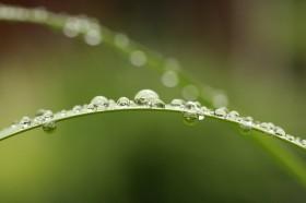 Las lluvias seguirán el fin de semana y volverán con fuerza a mediados de la semana que viene