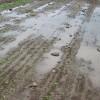 Esta semana vuelven las lluvias sobre la región central del país