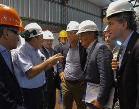Macri prometió cuadruplicar el magro presupuesto asignado al régimen de subsidios forestales: piden cambiar pagos directos por un bono fiscal