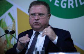 La otra guerra comercial: Brasil denunció que la Unión Europea aplica barreras sanitarias para restringir el ingreso de carne aviar
