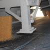 Los empresarios que utilizaron tecnología comercial podrán vender maíz tardío con un ingreso adicional de casi 1900 $/ha