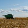 Clima ideal para avanzar con la cosecha gruesa: esta semana no se prevén precipitaciones en la zona pampeana