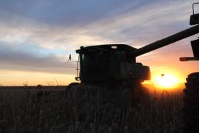 """Efecto inundación: el maíz temprano disponible tiene un """"premio"""" del 17% inédito para esta época del año"""