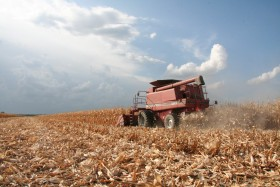 Por suerte el clima ayuda: no se prevén grandes lluvias que puedan complicar lo que falta cosechar de la gruesa