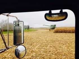"""Se desdobló el mercado de maíz: exportadores pagan """"premios"""" por el cereal convencional pero castigan al tardío"""