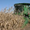El gobierno nacional ya recaudó más de 300 millones de dólares con el cobro de retenciones anticipadas de maíz 2013/14