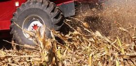 Esta semana habrá tiempo ideal para avanzar con la cosecha en la mayor parte de las regiones productivas