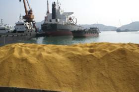 Golpe bajista para el maíz: China bloqueó el ingreso de granos destilados estadounidenses por contener un evento no aprobado de Syngenta