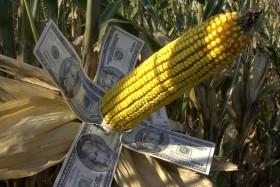 Esta semana el gobierno nacional recaudó más de 100 M/u$s con retenciones anticipadas de cereales
