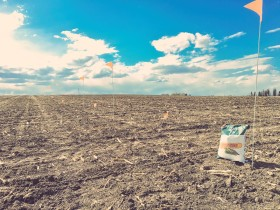 Esta semana operadores tomaron conciencia que el maíz necesita condiciones climáticas óptimas en EE.UU. por tercer año consecutivo