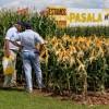 Sin retenciones es mejor: empleados de empresas semilleras son los trabajadores agroindustriales que mayores ganancias salariales registraron en los últimos tres años