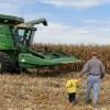 Argentina permanece al margen del mercado de importación de maíz chino: apenas pudo colocar 66.000 toneladas