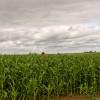 Sigue la recarga de perfiles: esta semana se llueve todo en buena parte del centro y norte del país