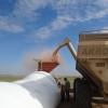 Bolsas de trabajo de Uatre: avanza la iniciativa para eximir a los productores con personal propio de la obligación de contratar trabajadores temporarios