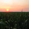El déficit energético superó los 5800 M/u$s en lo que va del año: se necesita una nueva revolución agrícola para financiarlo
