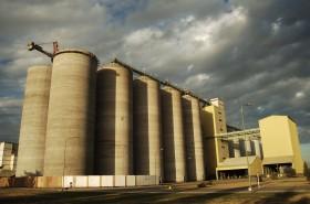¿Cuáles son las condiciones comerciales de Cervecería y Maltería Quilmes para los contratos de producción de cebada cervecera 2020/21?