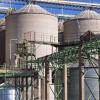 La exportación de malta creció un 35%: pero la matriz cerealera argentina se desindustrializó
