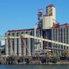 Amigos son los amigos: el gobierno liberó exportaciones de harina de trigo por un 45% más del cupo prometido